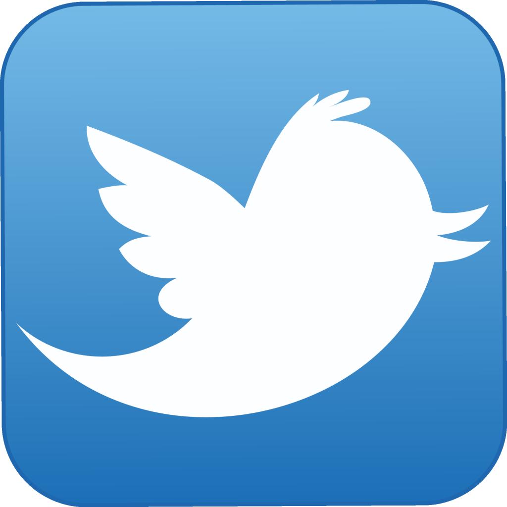 Twitter için alternatif DNS adresleri