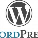 Bazı WordPress temaları için geçerli reklam kaldırma yöntemi